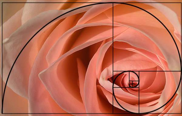 golden-spiral-applied-photography-2_1_